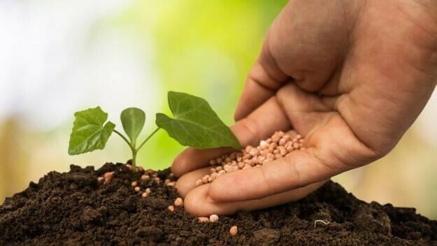 La nanotecnología en una agricultura cada vez más sostenible