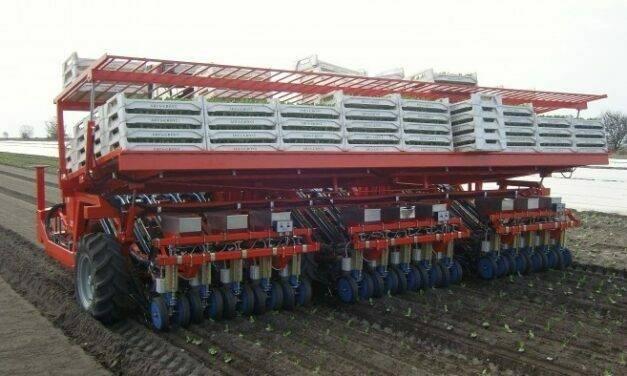 Trasplantadora ROTOSTRAPP, diseñada para hortalizas de hoja y otras verduras
