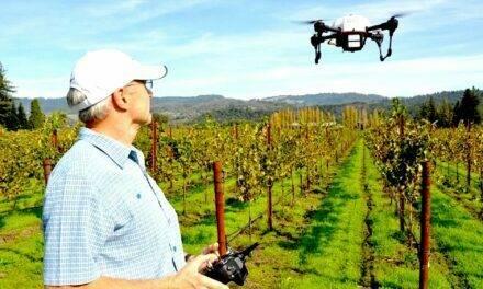 Agricultura de precisión: 3º jornada virtual de su aplicación en agricultura