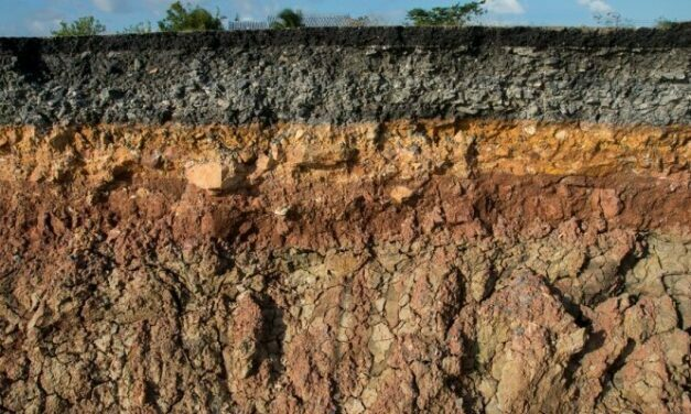 Humans responsible for decreasing soil quality