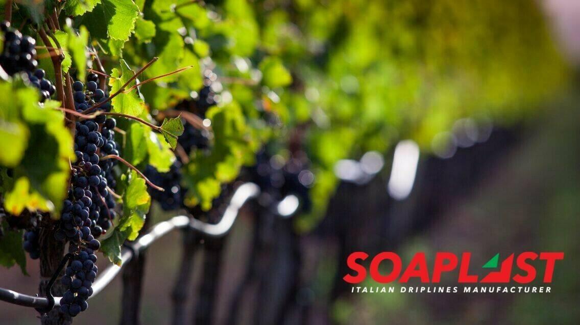 Soaplast: sistemas de riego por goteo eficientes