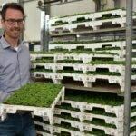 Beekenkamp Packaging: conoce la amplia gama de bandejas de semillas sostenibles