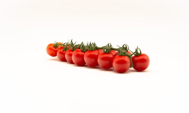 Durillo: the cherry tomato for the TOP SEEDS INTERNATIONAL