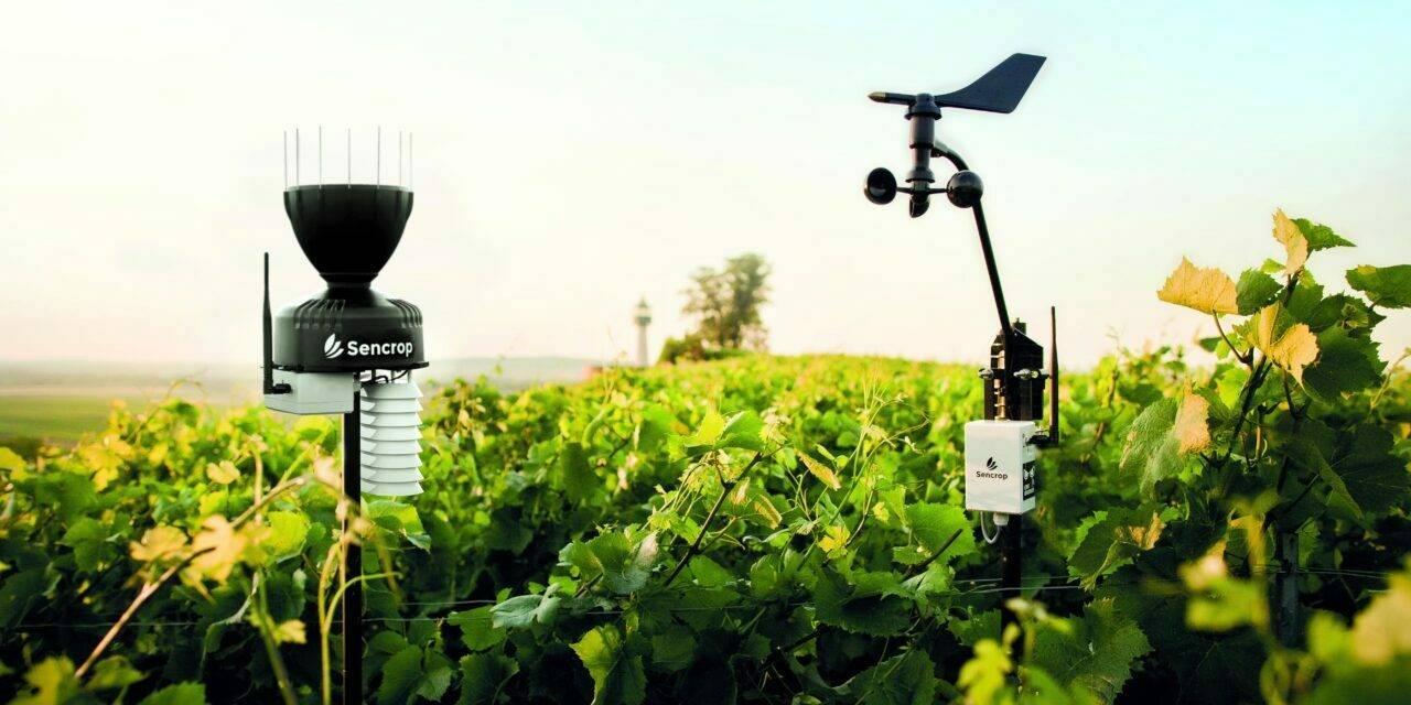 La empresa francesa Sencrop presenta en España su nueva tecnología Agtech