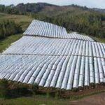 Agralia: Agrotextiles para la protección de cultivos