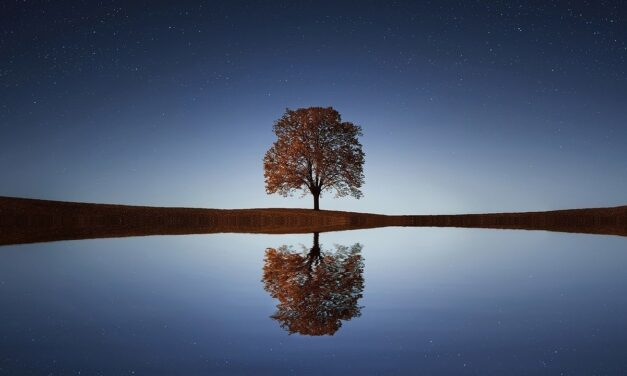 El agua ha sido, es y será un recurso indispensable para la vida