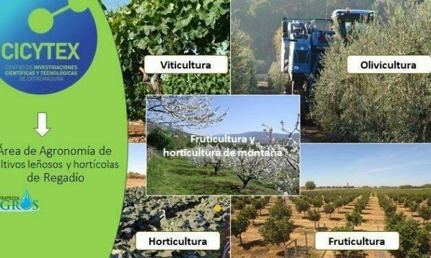 Área de agronomía de cultivos de regadío, del CICYTEX