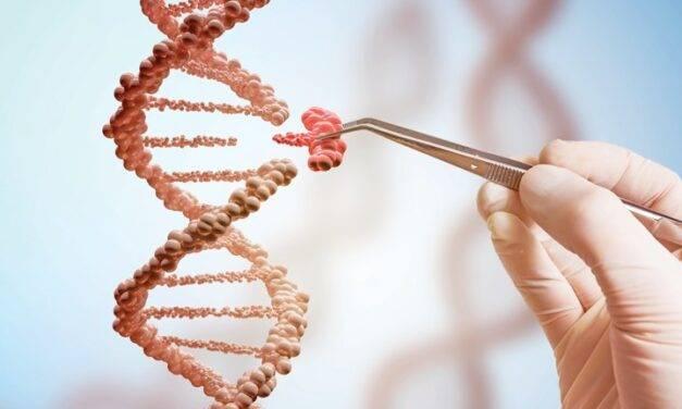 Comisión Europea: publicado el estudio sobre nuevas técnicas genómicas