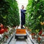 BASF: primeros pasos del avanzado centro en Etiopía