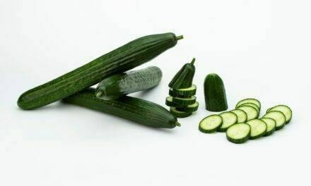 Sakata presenta IZAL la nueva variedad de pepino holandés con las mejores características del mercado
