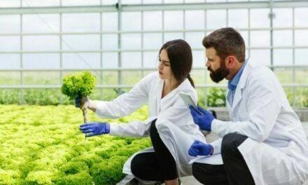 Máster interuniversitario de sanidad vegetal 2021/2022