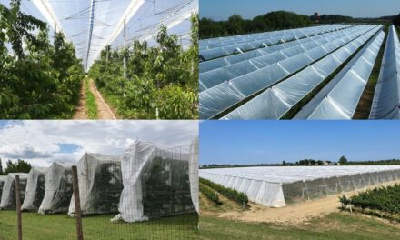 Fruticultura controlada y ¿protegida?