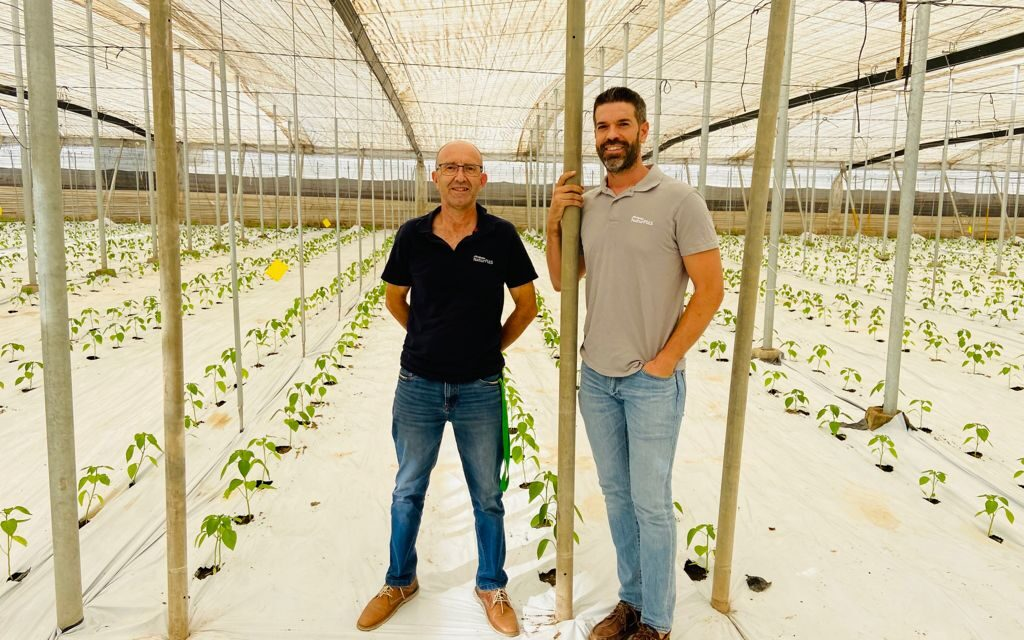 Gama Agroclima de Naturplás, la apuesta segura para tu cubierta de invernadero