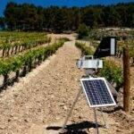 VITICAST, hacia una viticultura más sostenible