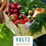 VOLTZ MARAÎCHAGE, ya disponibles los catálogos 2022/2023 para España